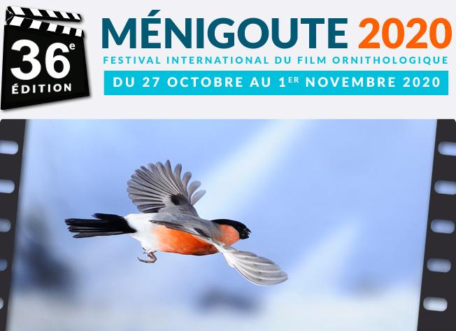Festival de Ménigoute